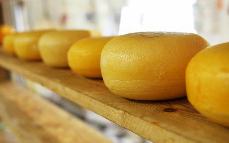 La Justicia europea resuelve sobre los dos quesos holandeses que sabían igual
